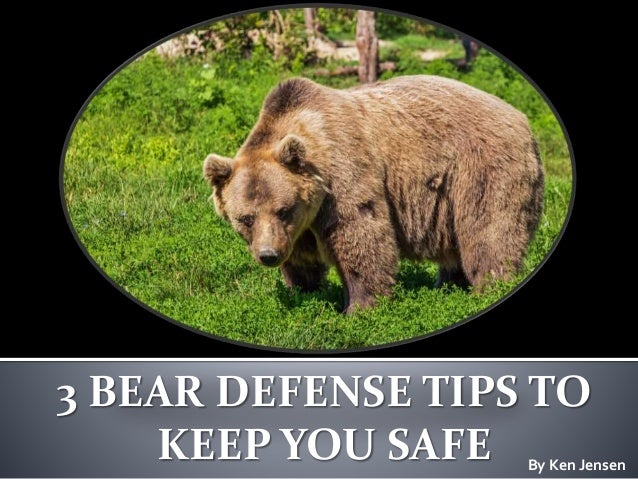 3 BEAR DEFENSE TIPS TO KEEP YOU SAFE By Ken Jensen
