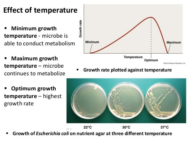 effect of ph on microbial growth