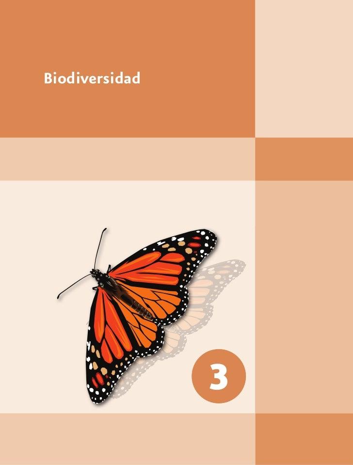 Biodiversidad                3