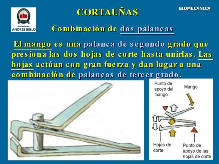 3 Biomec Palancas