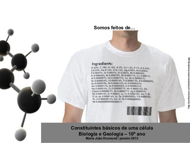 Somos feitos de…                                          http://profmokeur.ca/chimie/imchim/chembody.jpgConstituintes bás...