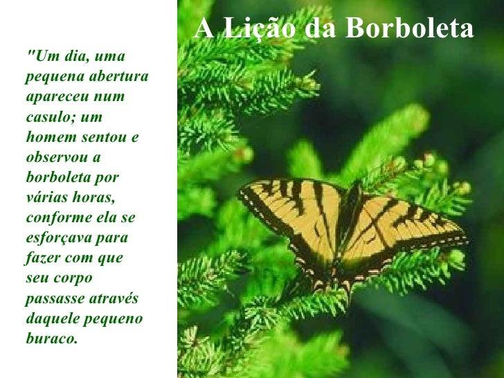 """A Lição da Borboleta """"Um dia, uma pequena abertura apareceu num casulo; um homem sentou e observou a borboleta por vá..."""