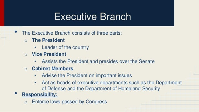 Executive branch government pictures - lgfox.ru