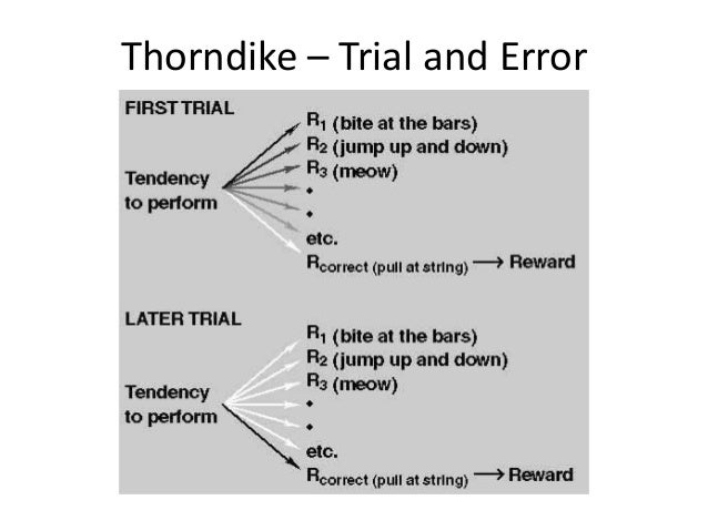 trial and error learning psychology