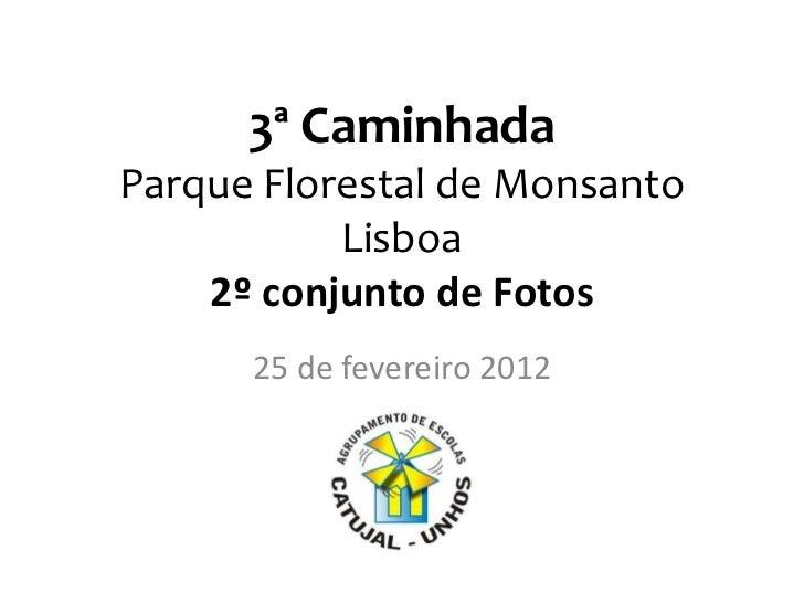 3ª CaminhadaParque Florestal de Monsanto           Lisboa    2º conjunto de Fotos      25 de fevereiro 2012