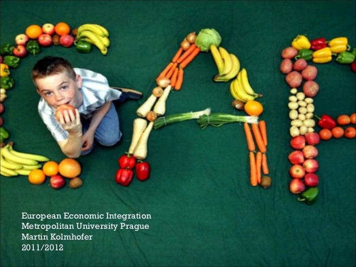 European Economic Integration Metropolitan University Prague Martin Kolmhofer 2011/2012