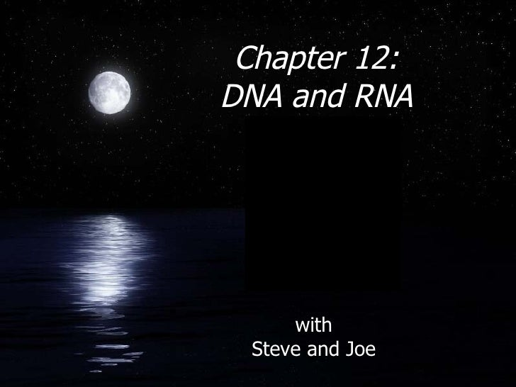 Chapter 12:  DNA and RNA with Steve and Joe