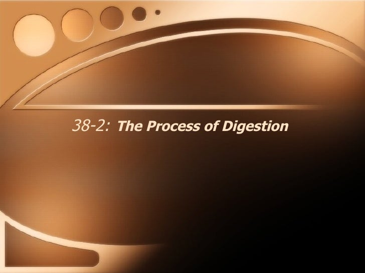 38-2:   The Process of Digestion