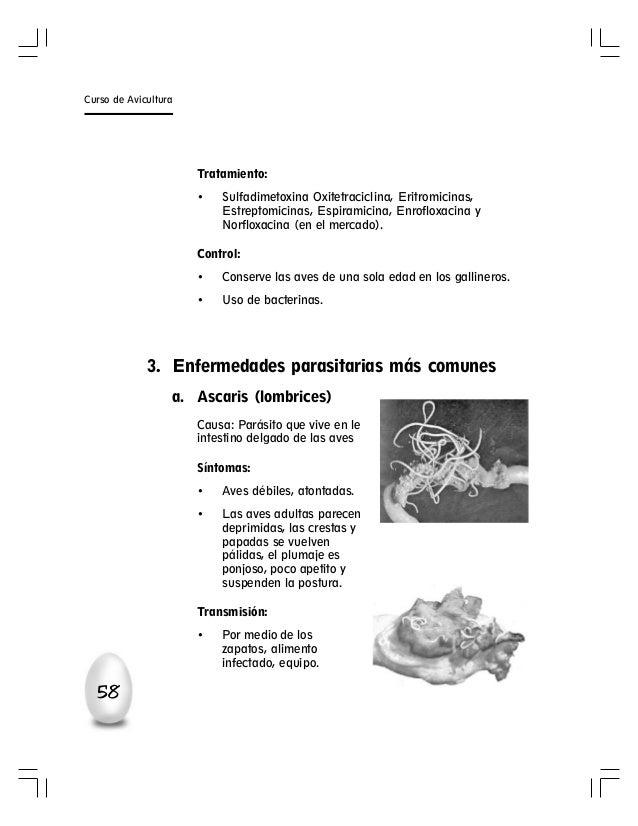 La profiláctica de las lombrices a los niños de la pastilla dekaris