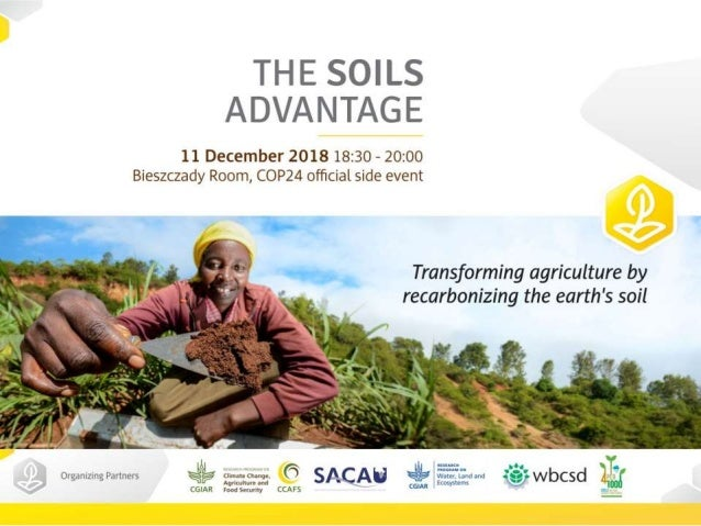 The business case for investment in soil health catalyzing action from the private sector • Dalma Somogyi Manager, Climate...