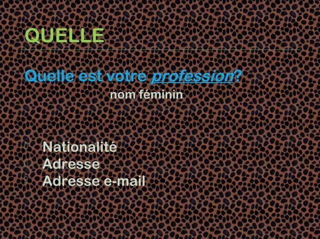 QUELLEQuelle est votre profession?             nom féminin   Nationalité   Adresse   Adresse e-mail