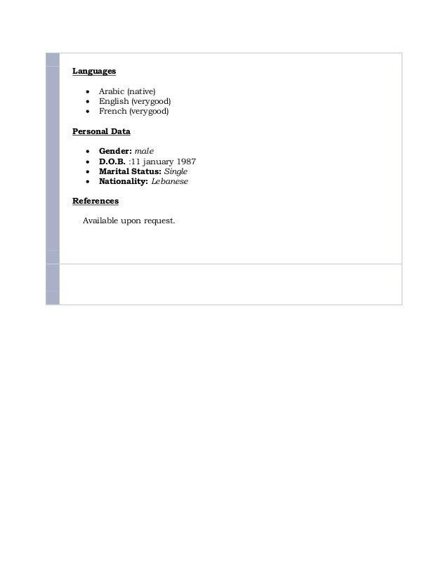 Alaa Jaafar CV Slide 3