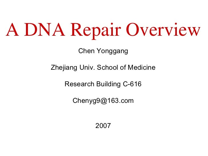 Chen Yonggang Zhejiang Univ. School of Medicine Research Building C-616 [email_address] 2007 A DNA Repair Overview