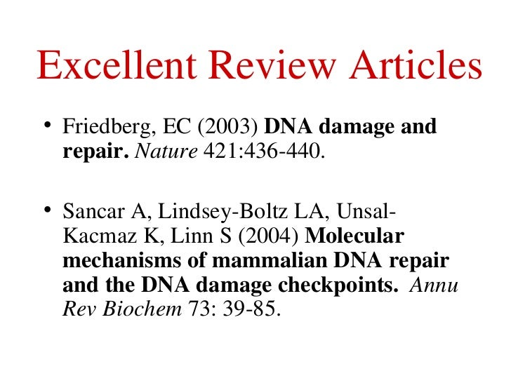 the importance of the dna polymerase epsilon in research Dna replication errors are an important source of genetic change  structural  studies of smaller proofreading dna polymerases have shown that the   replicative dna polymerases alpha, delta and epsilon from studies of  exonuclease and.