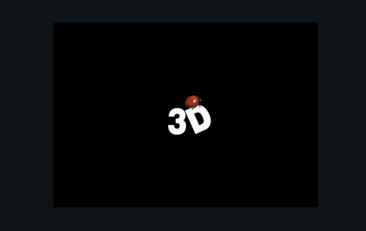 3 D Pictures