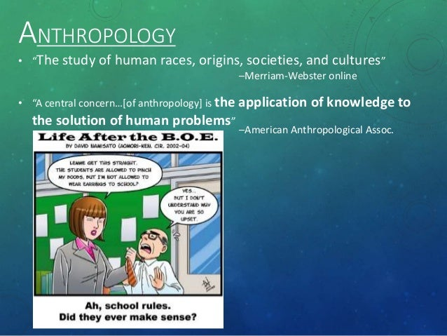 four main perspectives of anthropology Historical theories of anthropology animism from reader's guide to the it refers to theories of change in which development is seen to go through stages of increasing complexity and diversification major theorists ruth fulton benedict (1887-1948): topic page ruth.