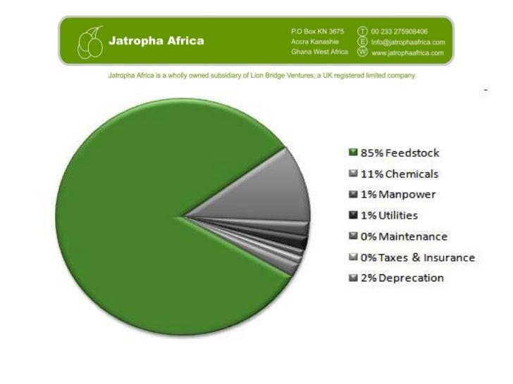 3 ecowas 2012_jatrophaafrica