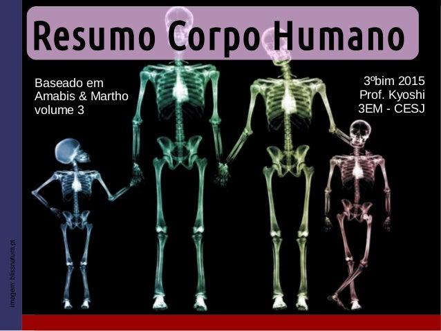 Resumo Corpo Humano 3ºbim 2015 Prof. Kyoshi 3EM - CESJ Imagem:blissnatura.pt Baseado em Amabis & Martho volume 3