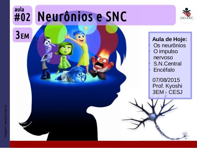 Imagem:www.b9.com.br Neurônios e SNC 3EM #02 aula 07/08/2015 Prof. Kyoshi 3EM - CESJ Aula de Hoje: • Os neurônios • O impu...