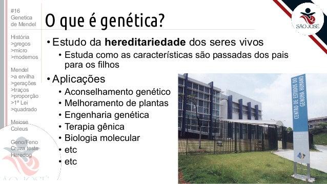 3EM #16 Genetica de Mendel (2016) Slide 2