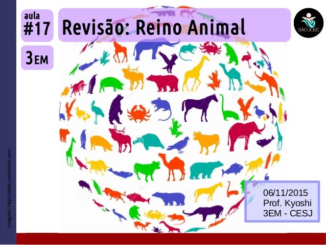 Imagem:http://static.comicvine.com Revisão: Reino Animal 3EM #17 aula 06/11/2015 Prof. Kyoshi 3EM - CESJ