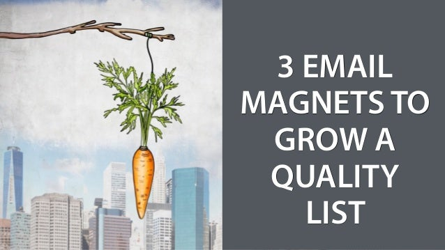 3 EMAIL MAGNETS TO GROW A QUALITY LIST