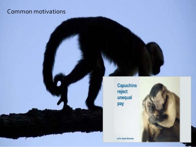 NICK SOUTHGATE CONSULTANCY Common motivations