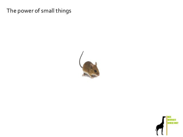 NICK SOUTHGATE CONSULTANCY The power of small things