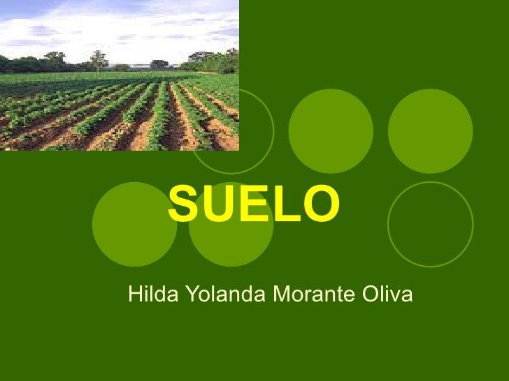 SUELO Hilda Yolanda Morante Oliva