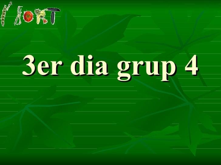 3er dia grup 4