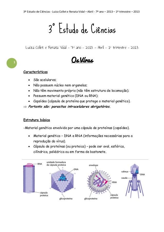 3º Estudo de Ciências - Luiza Collet e Renata Vidal – Abril - 7º ano – 2013 – 1º trimestre – 2013  3º Estudo de Ciências L...