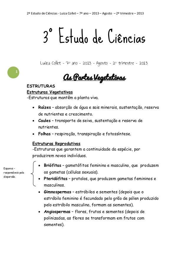 2º Estudo de Ciências - Luiza Collet – 7º ano – 2013 – Agosto – 2º trimestre – 2013  3º Estudo de Ciências Luiza Collet – ...