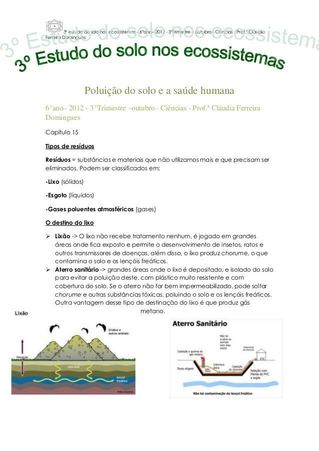 1         3º estudo do solo nos ecossistemas - 6°ano– 2012 - 3°Trimestre – outubro– Ciências - Prof.ª CláudiaFerreira Domi...