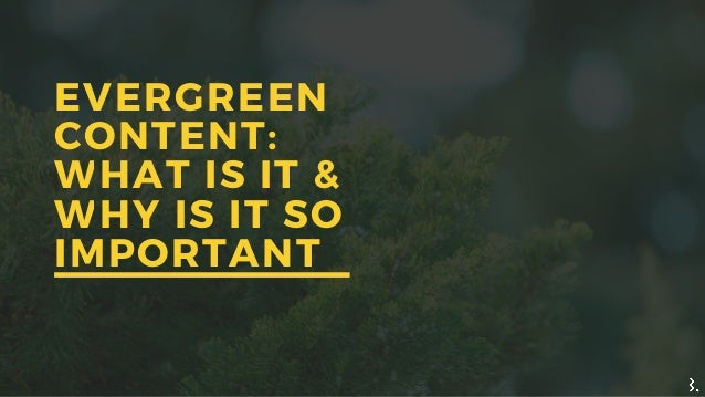 EVERGREEN CONTENT: WHAT IS IT & WHY IS IT SO IMPORTANT
