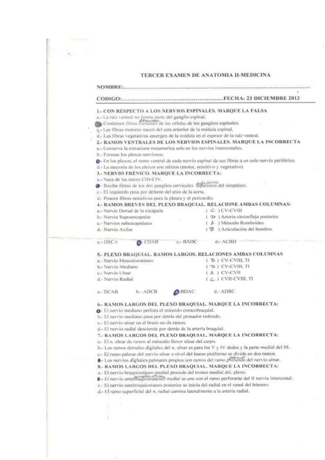 Excepcional Examen De Anatomía 3 Bandera - Imágenes de Anatomía ...