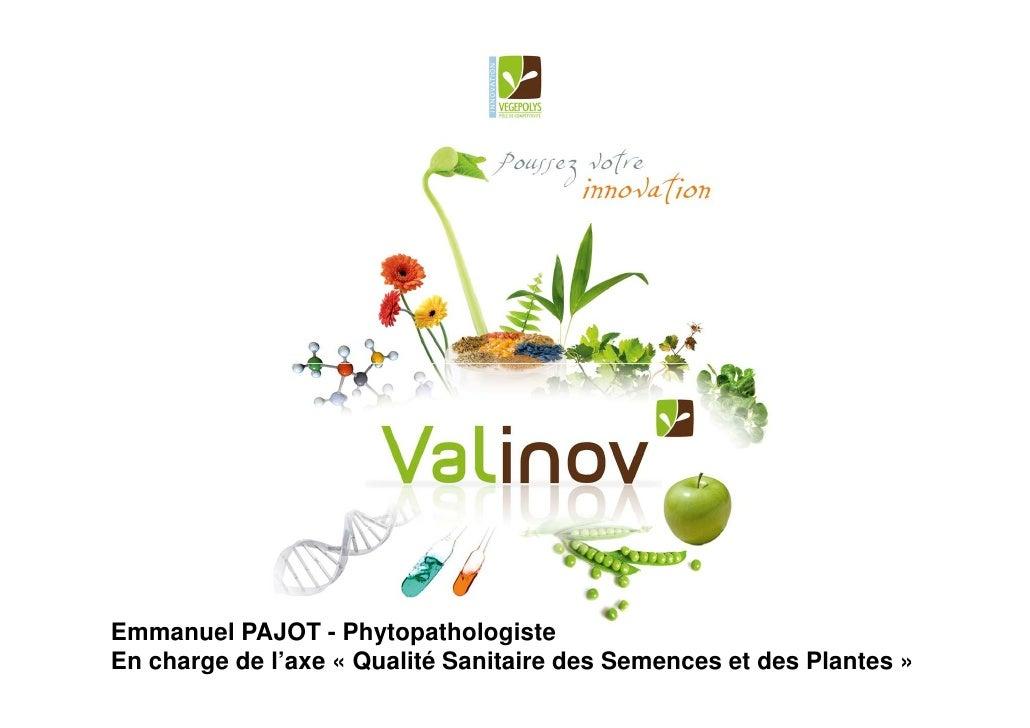 Emmanuel PAJOT - Phytopathologiste En charge de l'axe « Qualité Sanitaire des Semences et des Plantes »