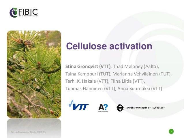 1 Cellulose activation Stina Grönqvist (VTT), Thad Maloney (Aalto), Taina Kamppuri (TUT), Marianna Vehviläinen (TUT), Terh...