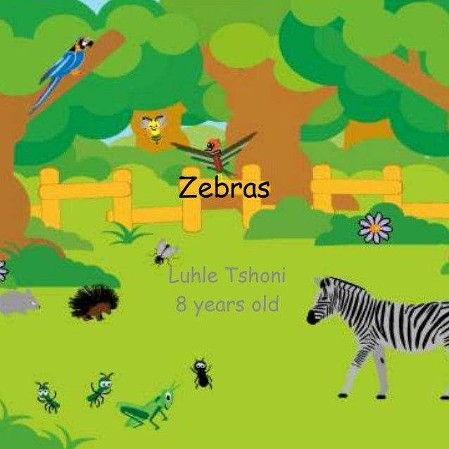Zebras Luhle Tshoni 8 years old