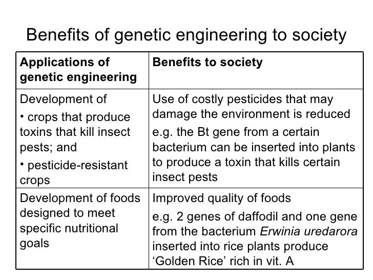 genetic engineering pros and cons essay