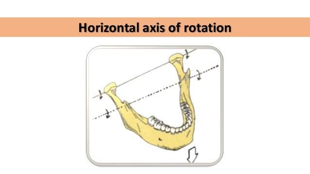 hinge axis