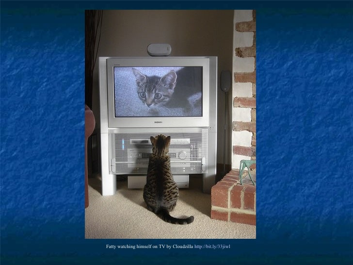 Fatty watching himself on TV by Cloudzilla  http://bit.ly/33jiwl