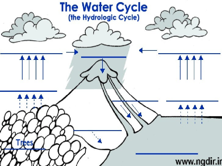 Earth Science Hydrosphere ppt – Hydrologic Cycle Worksheet