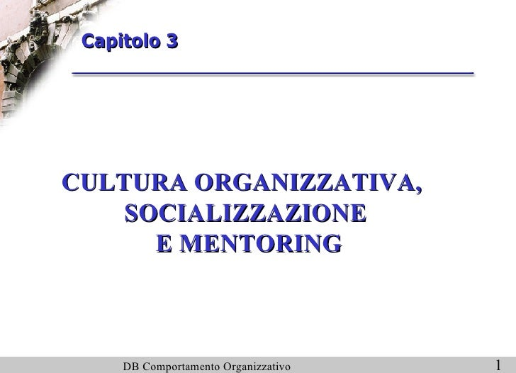 CULTURA ORGANIZZATIVA, SOCIALIZZAZIONE  E MENTORING Capitolo 3