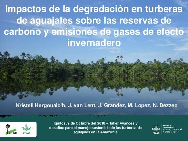 Impactos de la degradación en turberas de aguajales sobre las reservas de carbono y emisiones de gases de efecto invernade...
