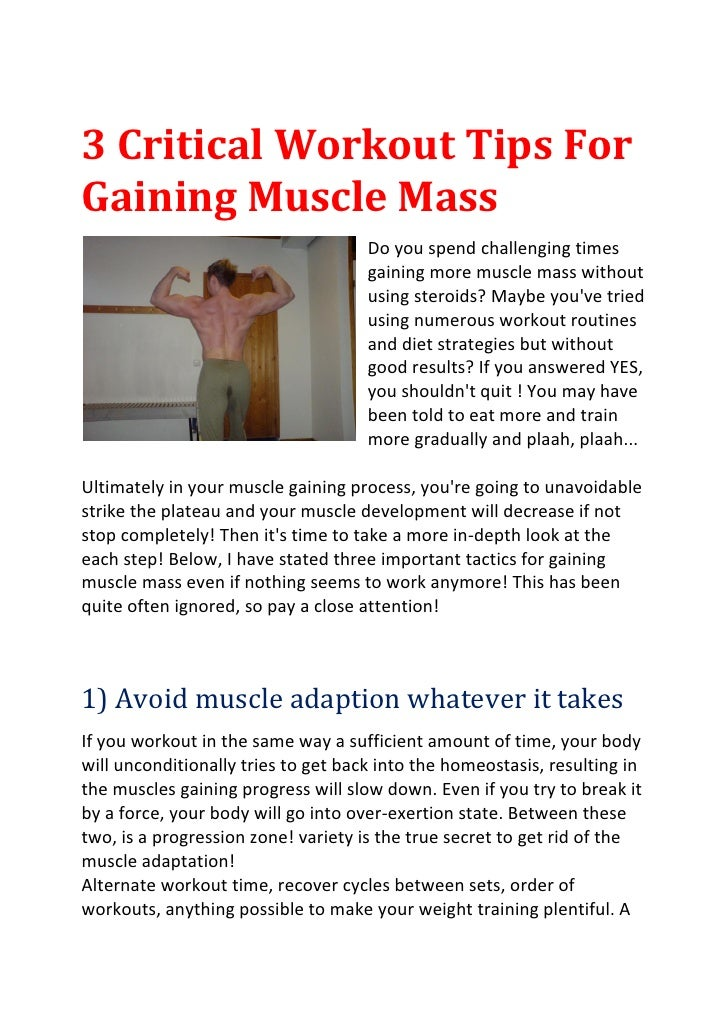 Workout Gain Muscle 113