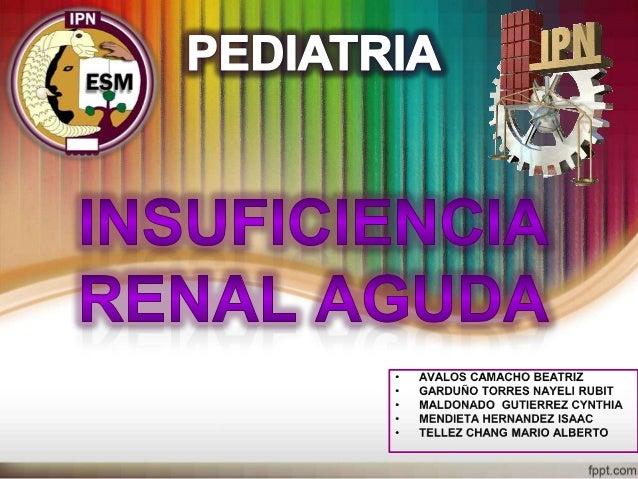 insuficiencia renal aguda Slide 1