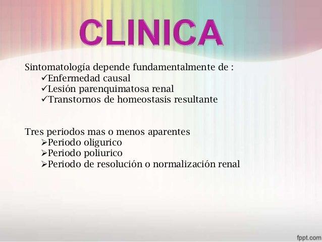 insuficiencia renal aguda Slide 14