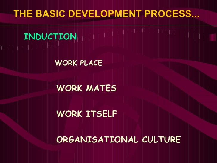 THE BASIC DEVELOPMENT PROCESS...   <ul><li>INDUCTION </li></ul><ul><ul><ul><li>WORK PLACE </li></ul></ul></ul><ul><ul><ul>...