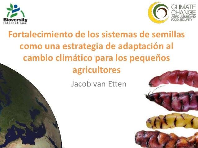 Fortalecimiento de los sistemas de semillas   como una estrategia de adaptación al    cambio climático para los pequeños  ...