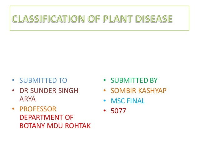MOST ACCEPTED CLASSIFICATION OF PLANT DISEASE BY SOMBIR KASHYAP